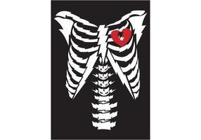Gratis Vector Bone