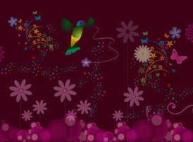 Hummingbird-300-220