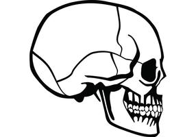 Skull Profile Vector