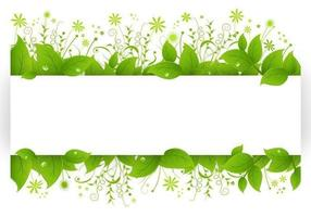 Leafy-banner-vector-pack