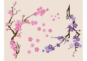 Vector de flores de cerejeira