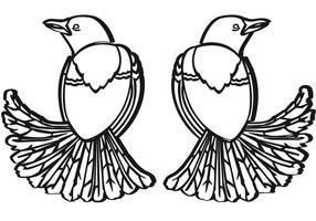 Merli - Two Birds Vector