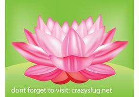 Flower Vector - Lotus Flower