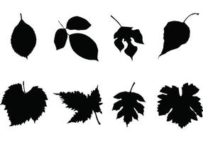 Free-leaf-silhouettes-vector-set