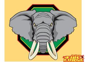 African Elephant Head Vector