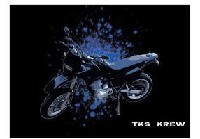 Vector de la motocicleta