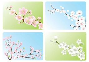 Cherry Blossom Wallpaper Vector Pack