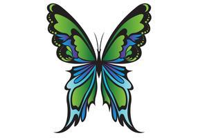Vector de mariposa verde