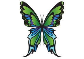 Groene Vlinder Vector