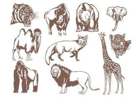 Wild-animals-vector-pack