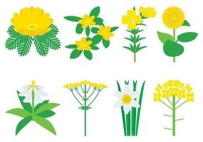 Flores Amarillas Vector Pack