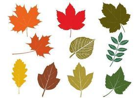 Pacote de vetores de folhas de outono