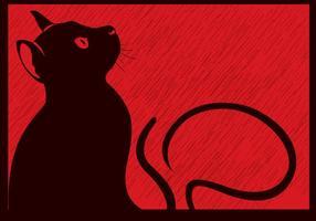 Zwarte Kat In De Regen