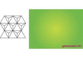 Geometric-vector