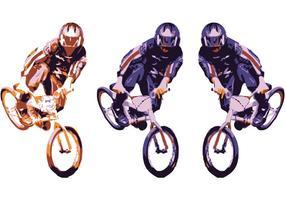 BMX Peitsche