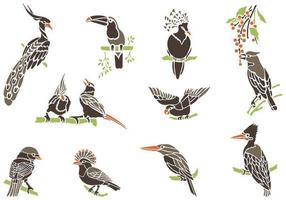 Exotic-bird-vectors-on-branches-pack
