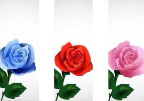 Rose-banner-vector-pack