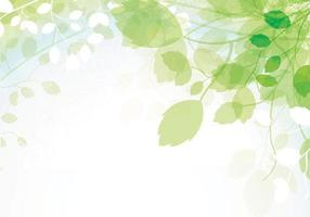 Spring-leaves-vector-background