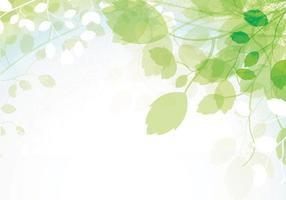 Fondo de Vector de hojas de primavera