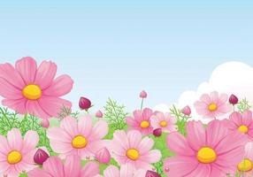 Beautiful Pink Daisy Wallpaper Vector