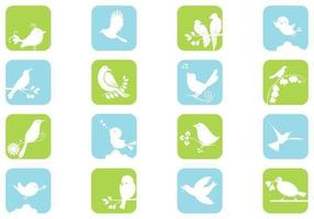 White Birds Vector Pack