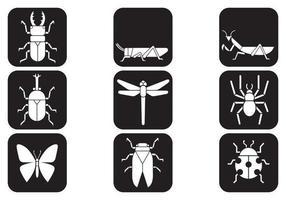 Pack de iconos vectoriales de insectos