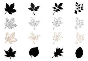 Silueta caída hojas paquete de vectores