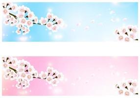 Cherry Blossom Banner Vector Pack