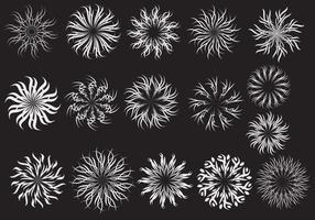 Paquete de vectores en espiral adornado