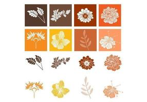 Botánico floral vector pack