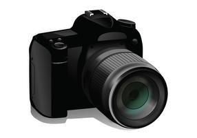 Kamera-Vektor