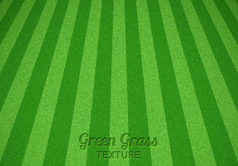 Grass Free Vector Art - (15225 Free Downloads)