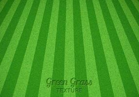 Mowed Green Grass Vector Texture
