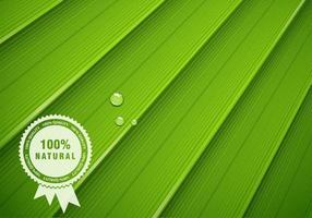 Green Leaf Vector Texture