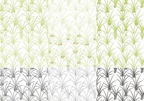 Gras Patroon Vector Pack
