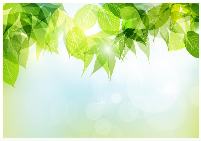 Spring Background Stock Vector - Image: 41127554
