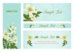 Lily Banners Vector