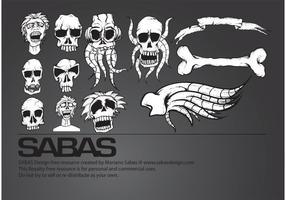 Conjunto de cráneo
