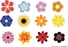 Nette Blumen