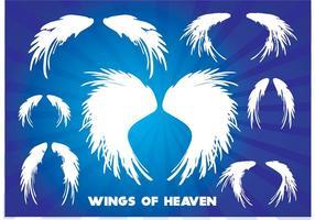 Les ailes du paradis