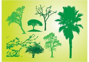Baum Bush Silhouetten
