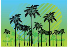 Vecteurs de palmiers gratuits