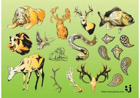 Wildlife Vector Illustrations