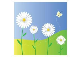 Flores de la margarita