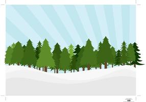 Paysage des pins
