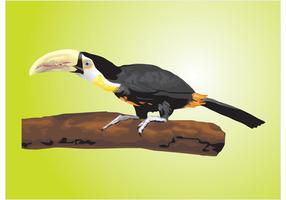 Vecteur toucan