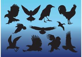 Vectores libres de las aves