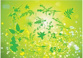 Verde Naturaleza Vector