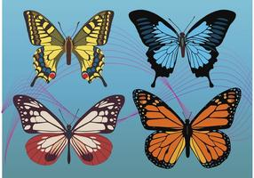 Colorful-butterfly-vectors