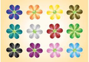 Coloridas Flores Vectores